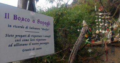 Il Bosco a Sonagli